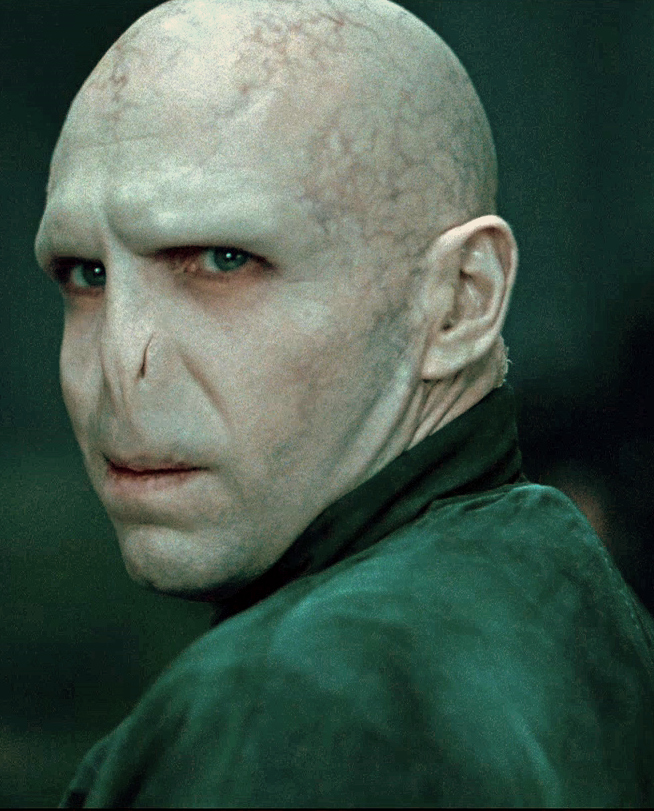 Voldermort of Harry Potter series